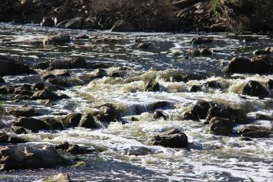 Bells Rapids
