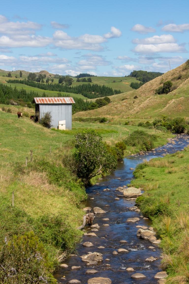 New Zealand Farm Land 5
