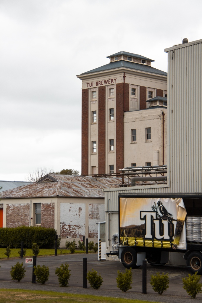 Tui Brewery 6