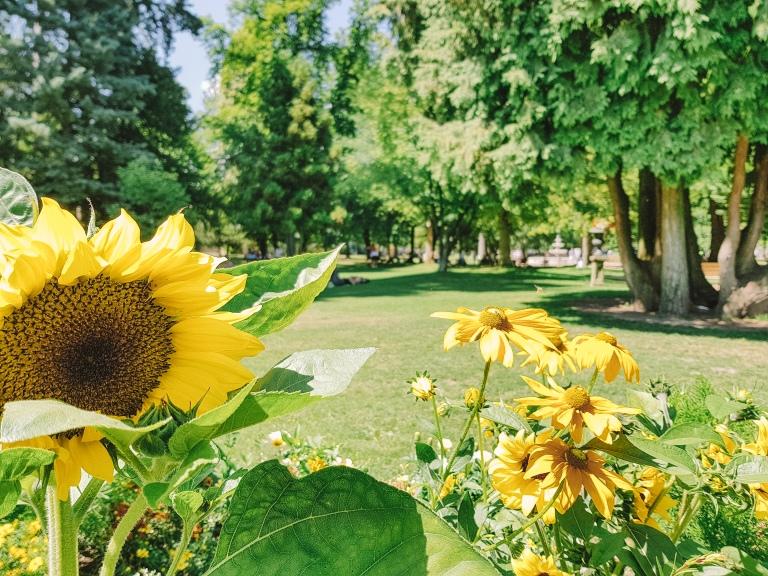 Annecy Gardens